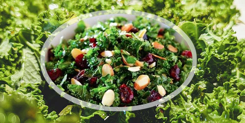 kale-salad-recipe-holistic-yoga