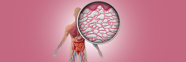 fascia as a sensory organ